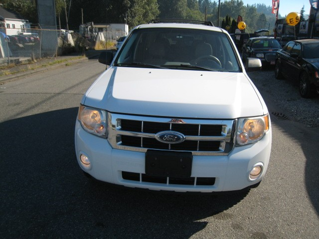 2008-Ford-Escape