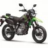 2021-Kawasaki-KLX300 SM
