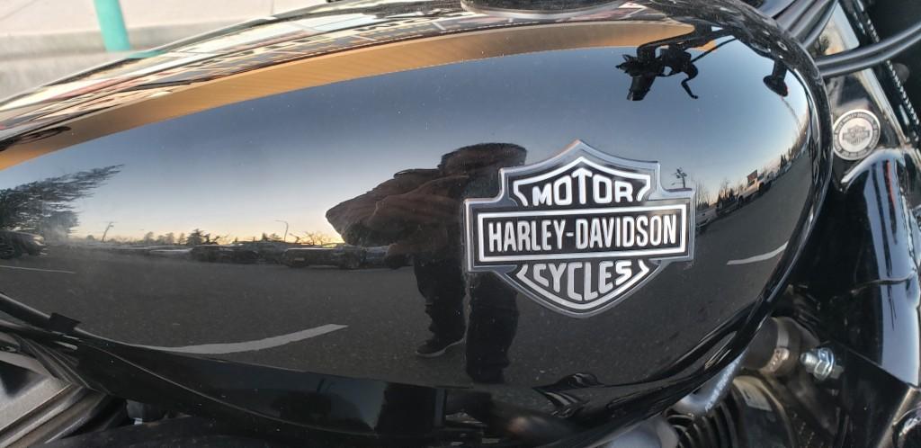 2017-Harley Davidson-VROD